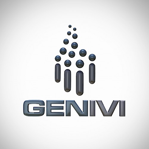 GENIVI Alliance - Development and introduction of a reference platform